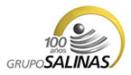 grupo-salinas_logo